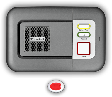 Carelink Alarms - Base Unit