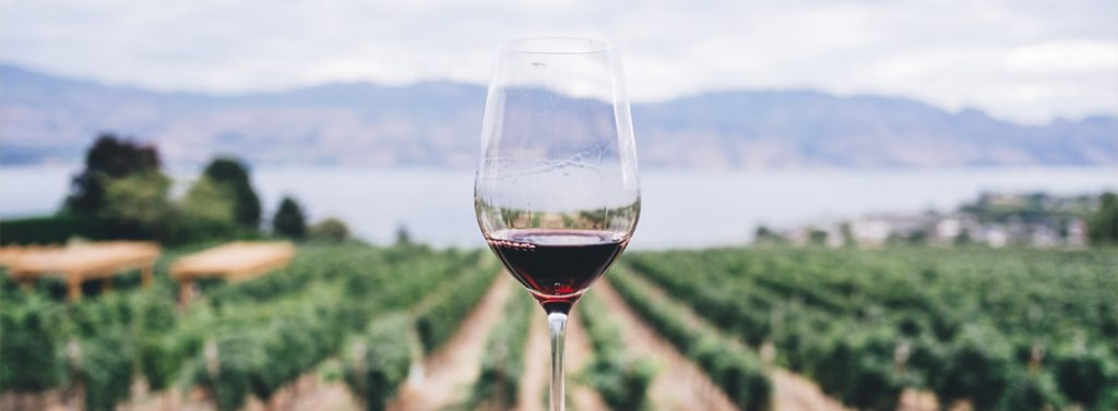 Does Wine Cause Cancer?